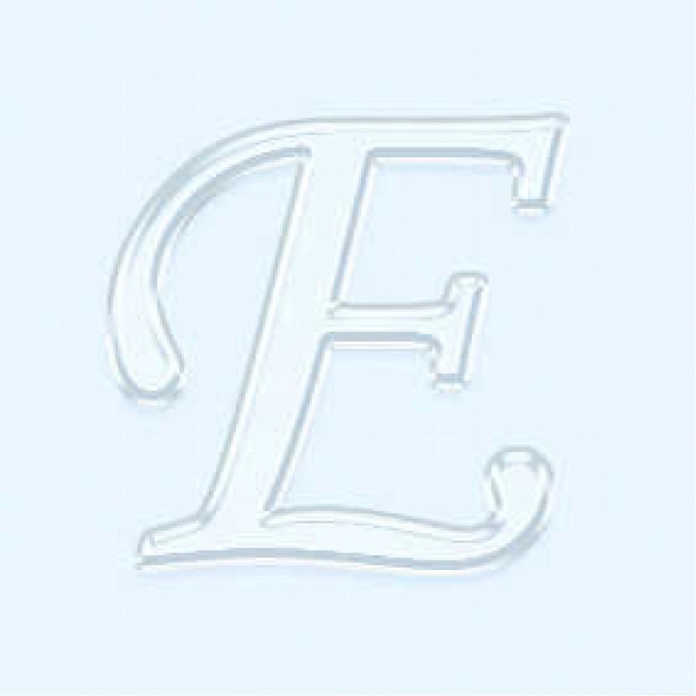 3mm Pleksi E Harfi